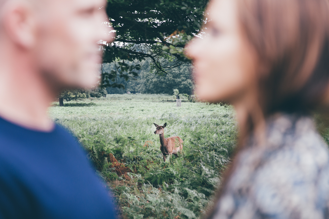 Richmond Park pre wedding shoot-100
